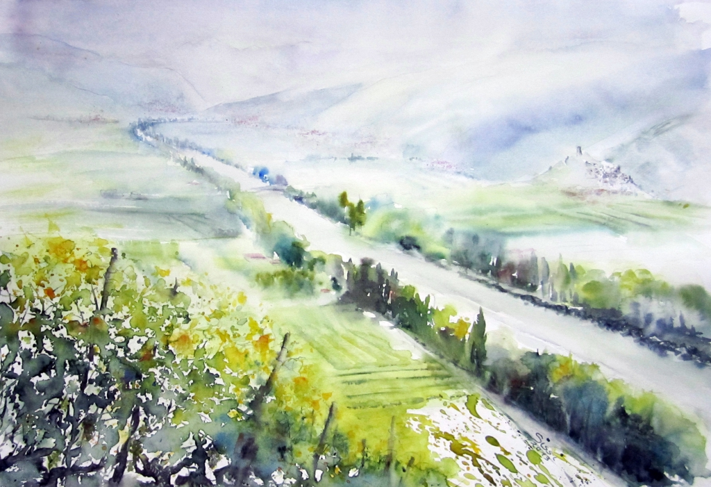 Plaine du Rhône